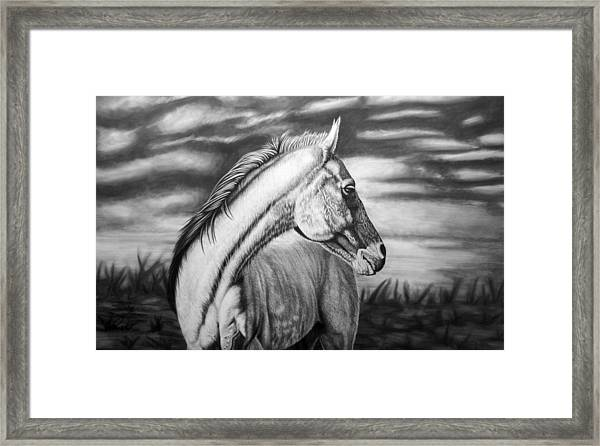 Looking Back Framed Print by Glen Powell