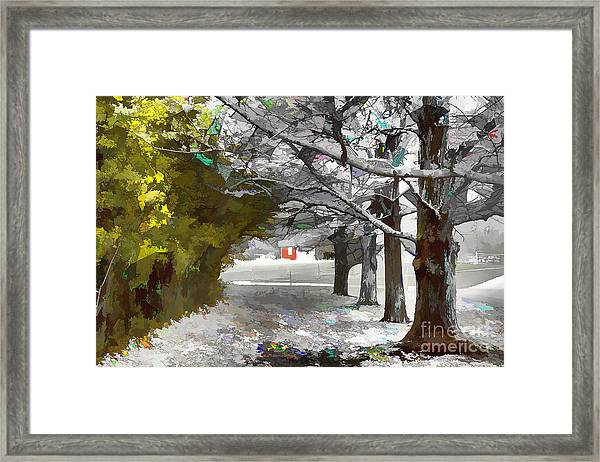 Looking Through The Tunnel Framed Print