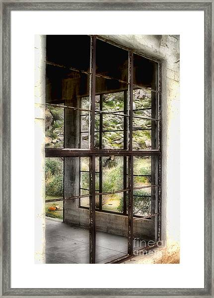 Looking Through The Window By Diana Sainz Framed Print