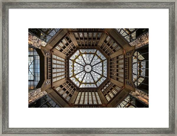 Looking Up Framed Print by Renate Reichert