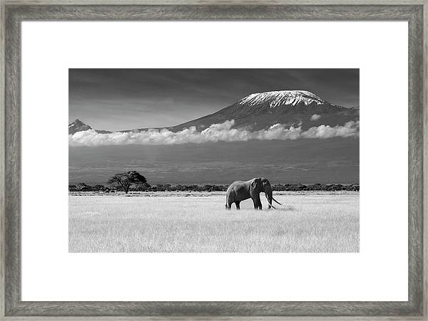 Lost Colors II Framed Print by Ibrahim Canakci