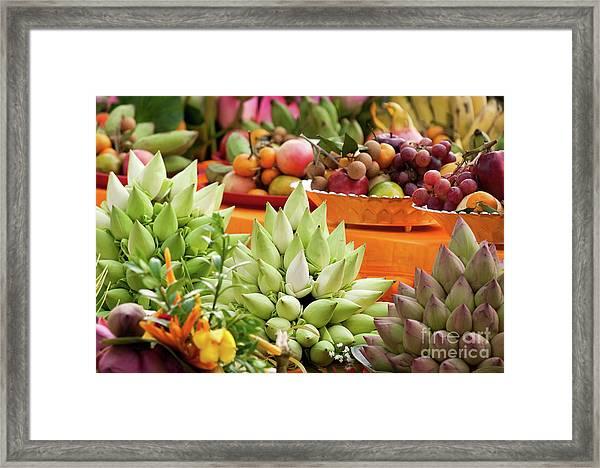 Lotus Buds 02 Framed Print