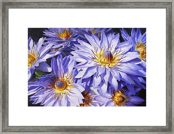 Lotus Light - Hawaiian Tropical Floral Framed Print