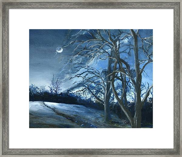 Louisiana Pasture In Winter Framed Print
