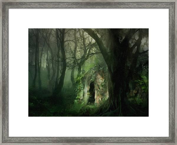 Love Affair With A Forest Framed Print
