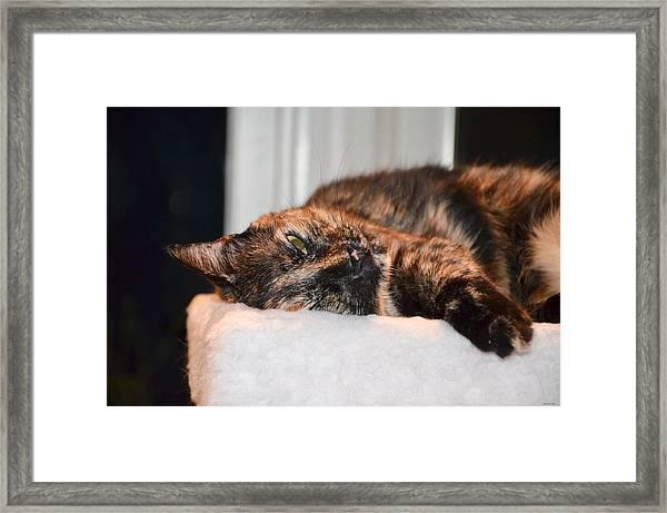 Love Is . . .  Framed Print