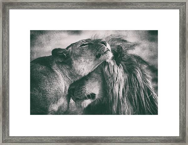 Love Framed Print by Mohammed Alnaser