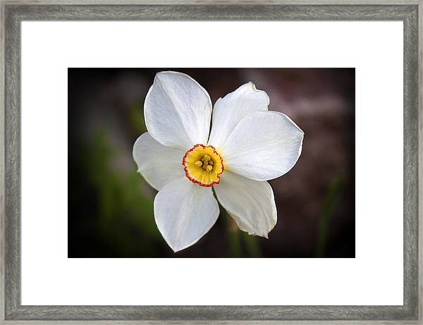 Love Smile And Happiness Framed Print