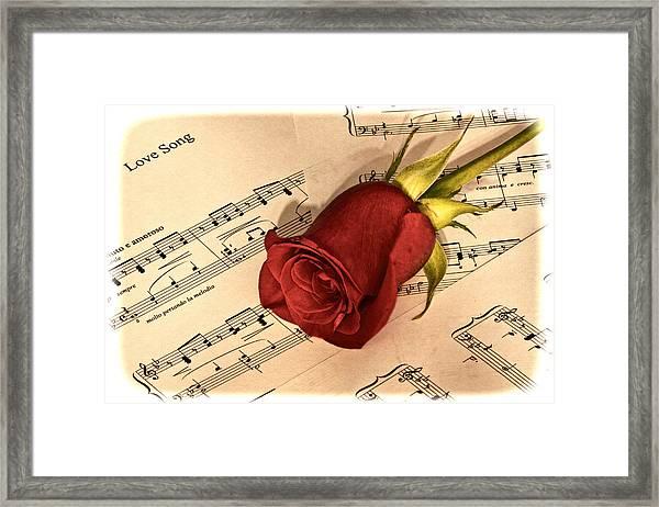 Love Song Framed Print by Zev Steinhardt