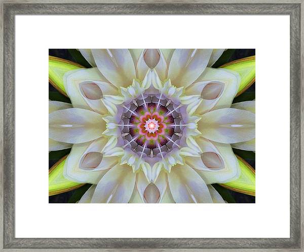 Love Star Flower Mandala Framed Print