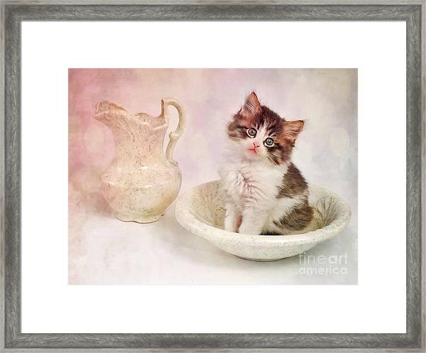Love That Cat Framed Print