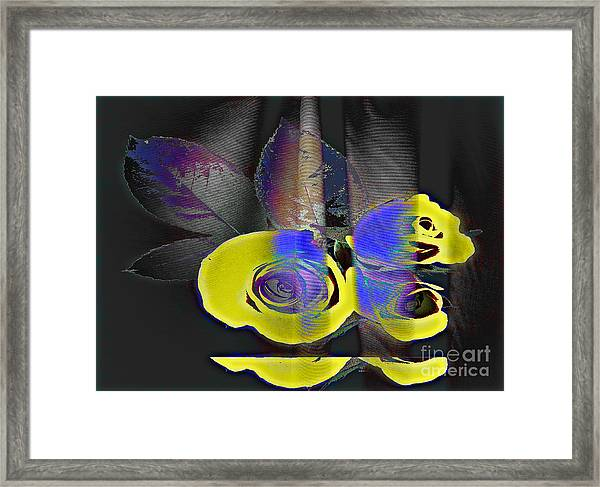 Lovely II Framed Print