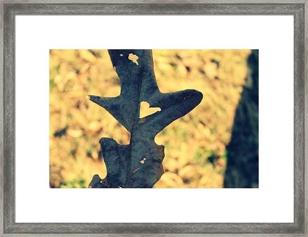 Lovely Leaf Framed Print