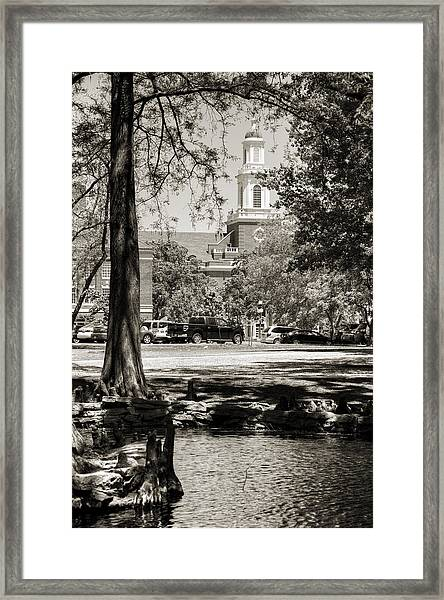 Low Library Framed Print