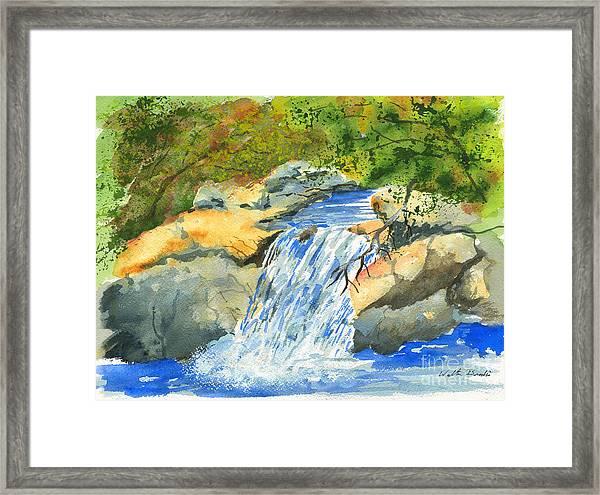 Lower Burch Creek Framed Print