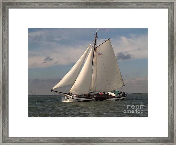 Loyal Winds Framed Print