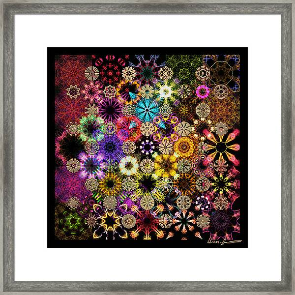 Luminiscent Kaleidoctogarden Framed Print
