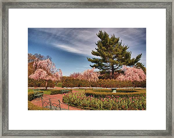 Luminous Colors Of Spring Framed Print