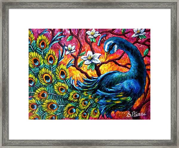 Luminous Peacock Framed Print