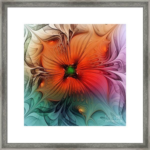 Luxury Blossom Dressed In Velvet And Silk Framed Print