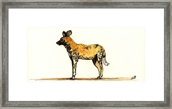 Lycaon Wild Dog  Framed Print