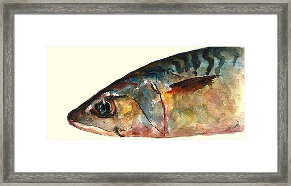 Mackerel Fish Framed Print