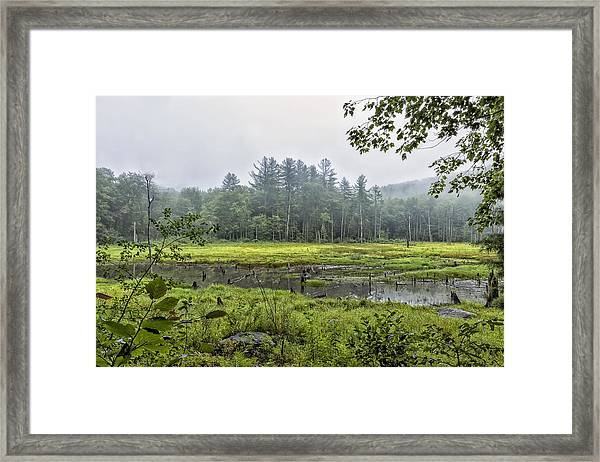 Madame Sherri Summer Pond Framed Print