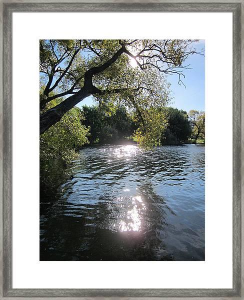 Made In Sweden Framed Print
