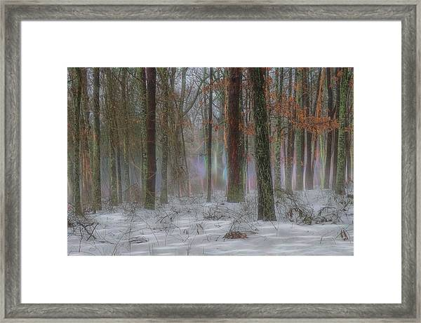 Framed Print featuring the photograph Magic In The Fog 2 by Beth Sawickie