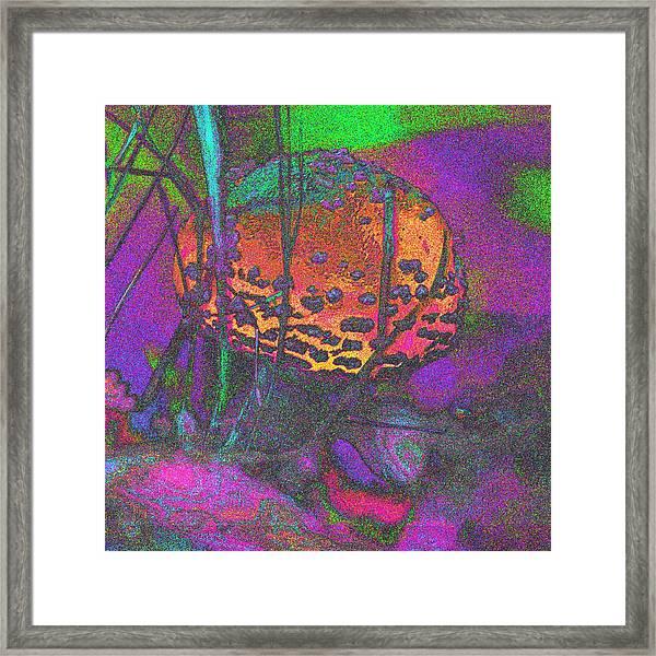 Magic Square Framed Print