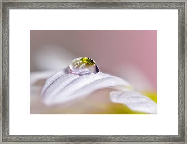 Magical Drop Framed Print