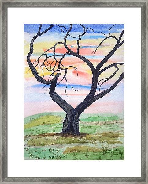Magic Mesquite Framed Print