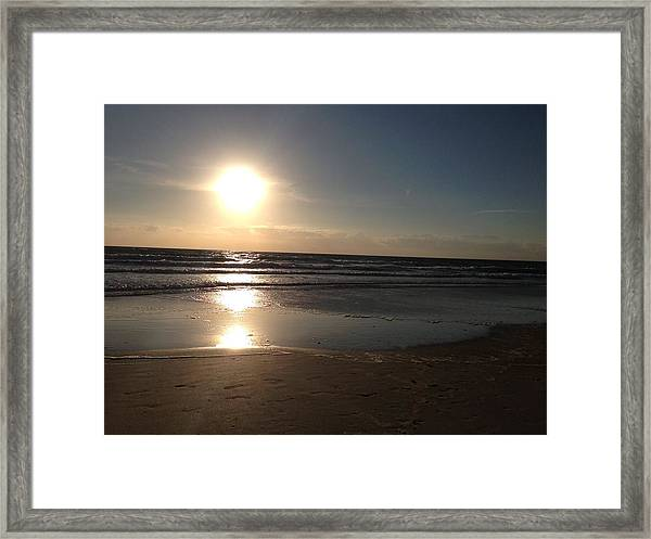 Magnificent Life Framed Print