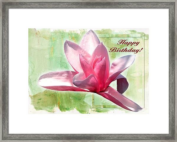 Magnolia 3 Framed Print