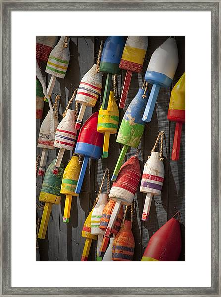 Maine Fishing Buoys Framed Print
