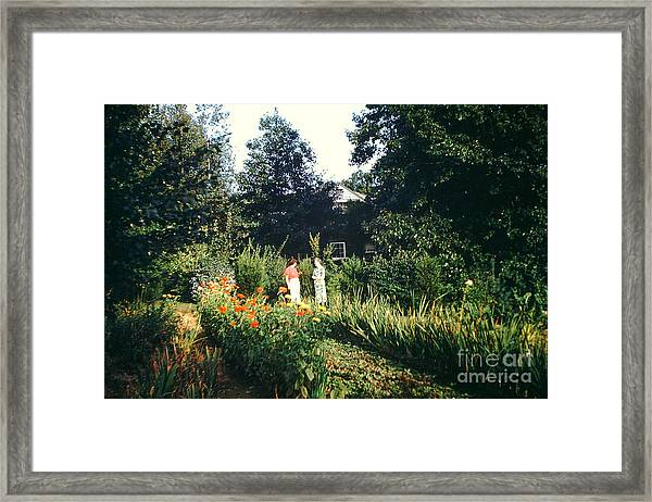 Maine Garden Framed Print