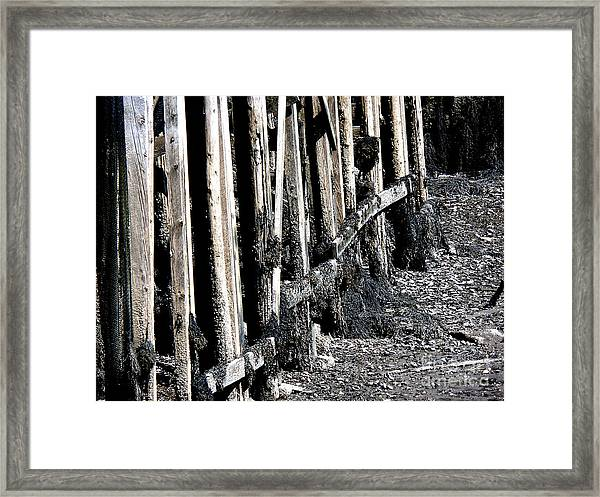 Maine Pier Framed Print