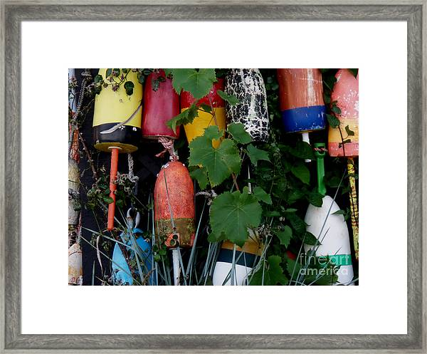 Maine Retirees Framed Print