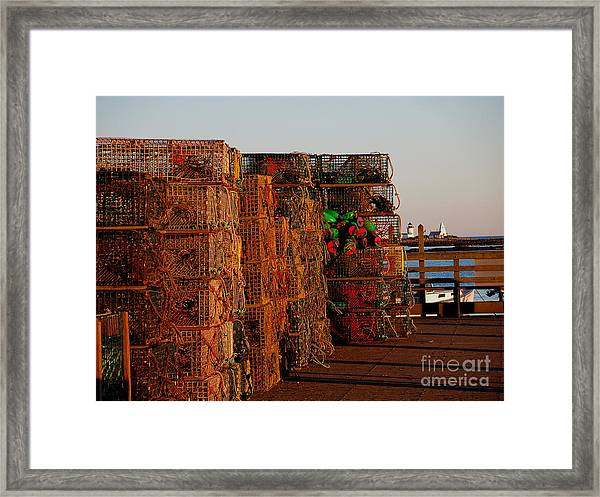 Maine Traps Framed Print