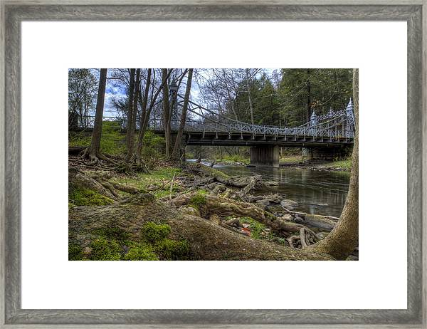 Majestic Bridge In The Woods Framed Print