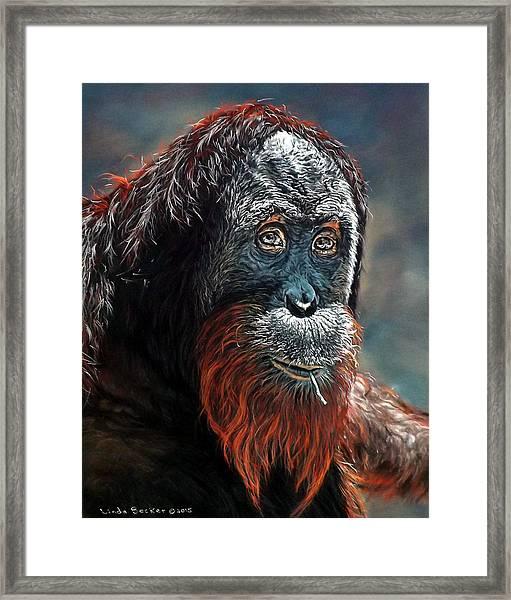 Makan Framed Print
