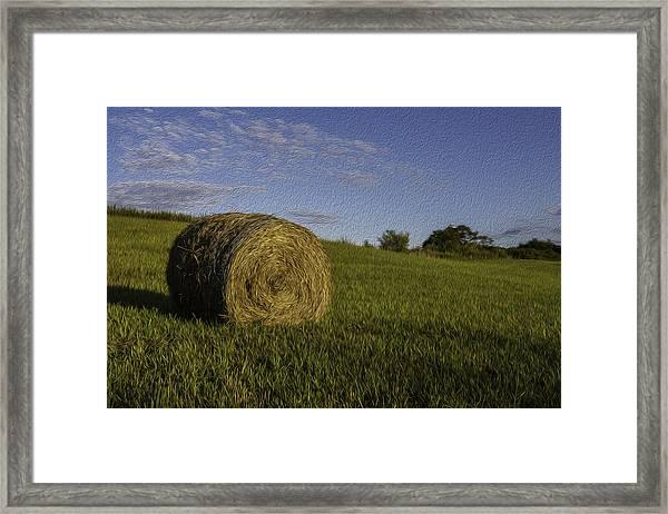 Make Hay Framed Print