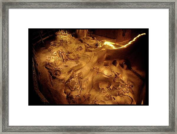 Mammoth Fossil Site Framed Print