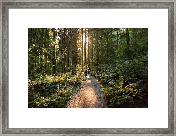 Man And Woman Hikers Admiring Sunbeams Streaming Through Trees Framed Print by PamelaJoeMcFarlane