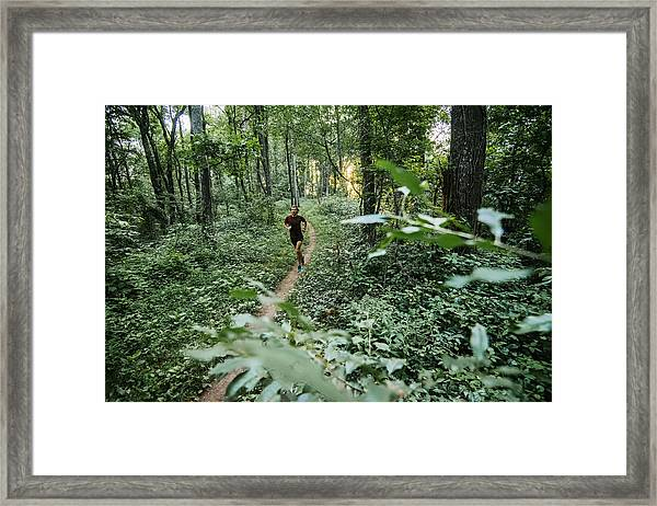 Man Jogging In Forest Along Mountain To Sea Trail, Asheville, North Carolina, Usa Framed Print by Andy Wickstrom / Aurora Photos
