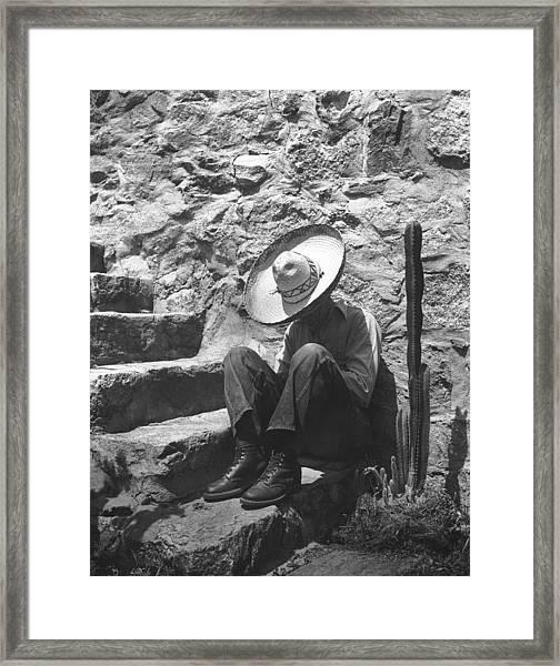 Man Taking A Siesta Framed Print