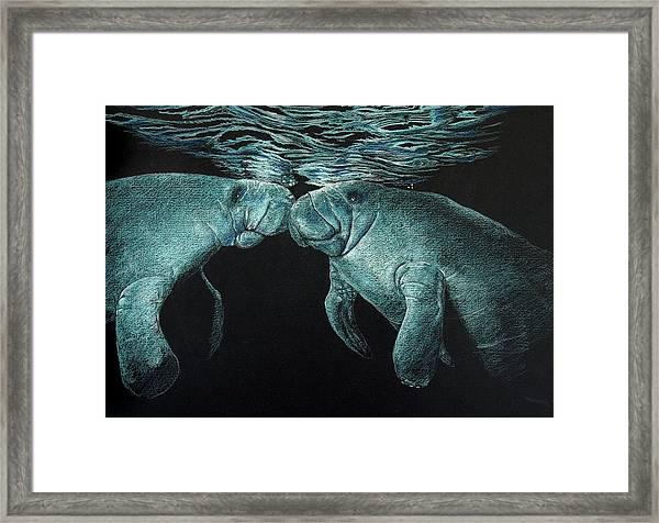 Manatees Framed Print