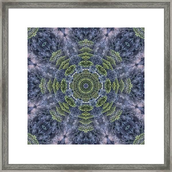 Mandala41 Framed Print