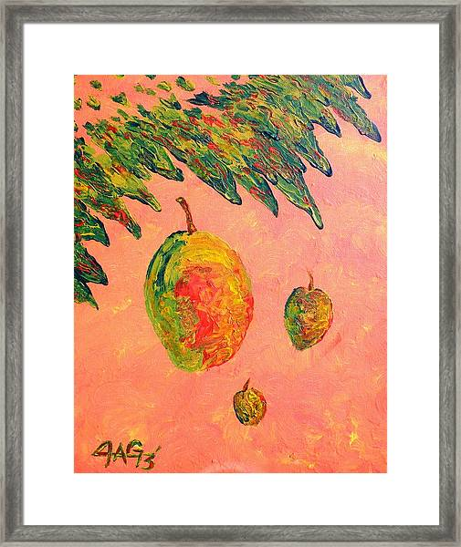 Mango Sky Framed Print