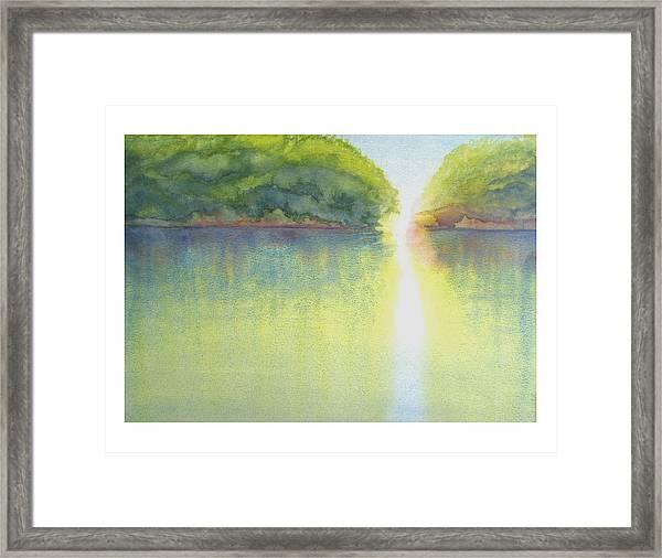 Mangrove Light Framed Print